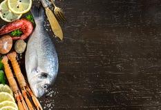Fresh dorado fish and seafood Stock Photography
