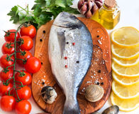 Fresh dorado fish and seafood Royalty Free Stock Photography