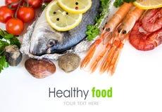 Fresh dorado fish and seafood Stock Images