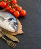 Fresh dorado fish and tomatoes Stock Photos