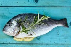 Fresh dorado fish Stock Photo