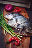 Fresh Dorado fish on a wooden board with vegetables. Royalty Free Stock Photography
