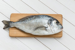 Fresh dorado fish on wooden cutting board. On white wooden table Royalty Free Stock Photography