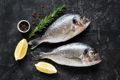 Fresh dorado or sea bass fish on slate background. With cooking ingredients, lemon rosemary and spices. Top view stock photo