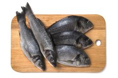 Fresh dorado and sea bass fish on wooden cutting board. Fresh raw sea bass and dorado fish on wooden cutting board, top view Royalty Free Stock Photo