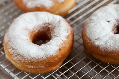 Fresh doughnut Royalty Free Stock Photos