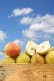Fresh doyenne de comice pear and a cut one Stock Photo