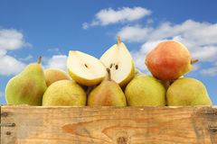 Fresh doyenne de comice pear and a cut one Stock Photography