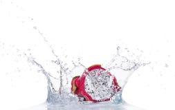 Fresh dragon fruit in water splash on white royalty free stock image