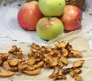 Fresh and dried apples Stock Photography