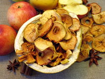 Fresh and dried apples. On linen fabric Royalty Free Stock Photography
