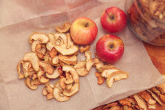 Fresh and dried apples Royalty Free Stock Photos