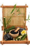 Fresh and dried bamboo and Bamboo charcoal powder. stock photos