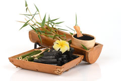 Fresh and dried bamboo and Bamboo charcoal powder. Fresh and dried bamboo and Bamboo charcoal powder, using a combination of personal care products such as soap Royalty Free Stock Photos