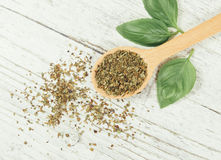 Fresh and dried basil plant for healthy cooking, herbs and spices. Royalty Free Stock Photography