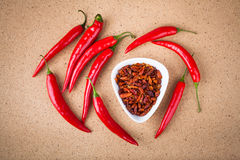 Fresh and dried chili peppers Royalty Free Stock Image