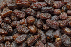 Fresh dried date fruits background Stock Image