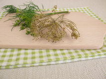 Fresh and dried dill Royalty Free Stock Photos