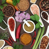 Fresh and Dried Herb and Spice Collection Royalty Free Stock Image