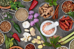 Fresh and Dried Herb and Spice Collection Stock Photography