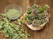 Fresh and dried herbs Stock Photo