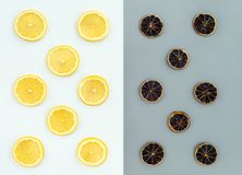 Fresh and dried lemon slices royalty free stock photos