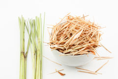 Fresh and dried lemongrass Stock Images