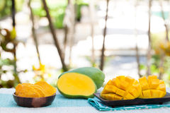 Fresh and dried mango fruit with smoothie juice Copy space. Fresh and dried mango fruit with smoothie juice on a outdoor tropical background Copy space Royalty Free Stock Images