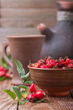 Fresh and dried rose hip Stock Image