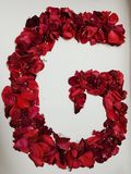 Letter G formed with red rose petals. Fresh and dried rose petals, background and texture, design for wedding or anniversary royalty free stock photos