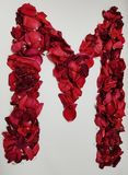 Letter M formed with red rose petals. Fresh and dried rose petals, background and texture, design for wedding or anniversary royalty free stock images