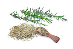 Fresh and dried rosemary in wooden spoon isolated on white stock photo