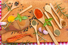 Fresh and dried spices - seasoning Royalty Free Stock Photo