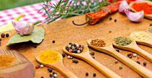 Fresh and dried spices - seasoning Royalty Free Stock Image