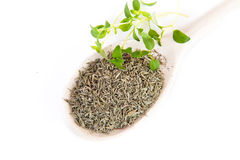 Fresh and dried thyme Stock Photo