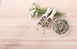 Fresh and dried yarrow. Top view of spoons and bowl with fresh and dried flowers and leaves of yarrow with a wooden background with copy space Stock Photography