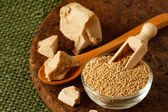 Fresh and dried yeast Royalty Free Stock Photo