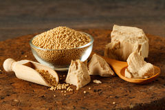 Fresh and dried yeast Stock Image