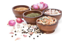 Fresh and dries spices and flavorings Royalty Free Stock Photography