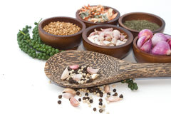 Fresh and dries spices and flavorings Royalty Free Stock Photo