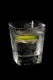 Fresh drink Stock Photography