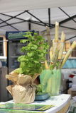 Fresh drink from sugar cane and mint Royalty Free Stock Image