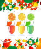Fresh drinks. Non alcoholic cocktails, summer refreshments Royalty Free Stock Image