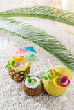 Fresh drinks in fresh fruits in sunny day Stock Photography