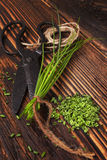 Fresh and dry chives herb. Stock Photos