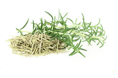 Fresh and dry rosemary Royalty Free Stock Photography
