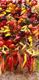 Fresh and dry strung colorful peppers Royalty Free Stock Images