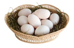 Duck eggs isolated Royalty Free Stock Photo