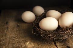 Fresh duck eggs in moody vintage retro style natural lighting se. Fresh duck eggs in moody vintage style natural lighting set up Royalty Free Stock Photo