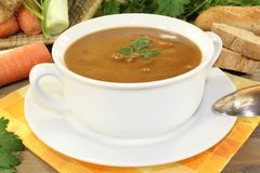 Fresh duck soup Stock Photography